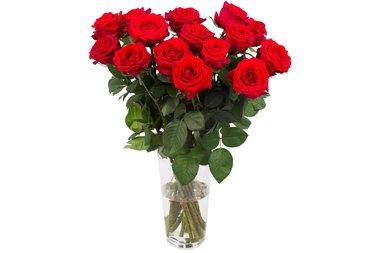 Roos Red Naomi Medium (15 stuks)(Roos Red Naomi Medium (15 stuks))